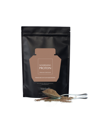 NOURISHING PLANT PROTEIN CHOCOLATE REFILL 300гр